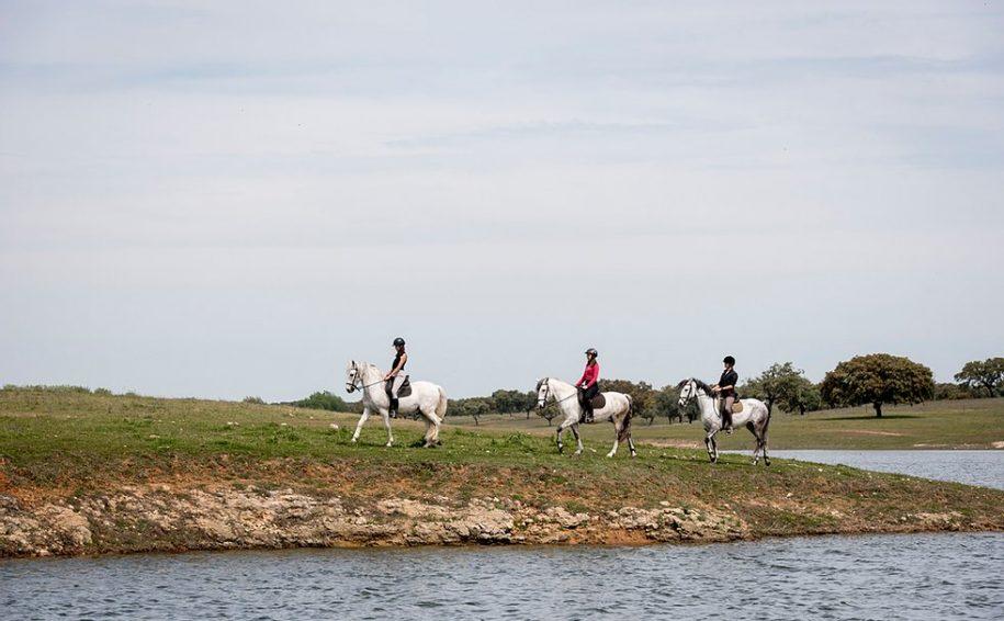 passeio cavalo alentejo casinhas santo antonio